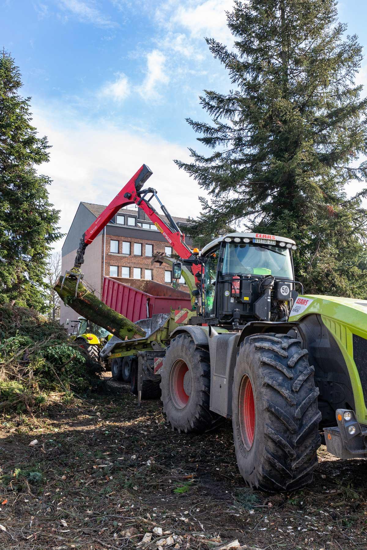 Baumfällarbeiten Krefeld